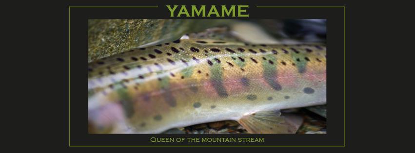 yamameflyrods